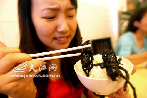 柬埔寨小吃油炸大蜘蛛,美女花容失色。